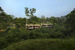 Terrace Tree Villa