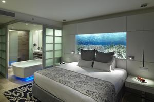 Paradisus Junior Suite
