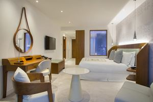 Park Suite - 2 Slaapkamers met plungepool