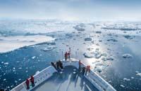 Paulet Island Antarctica