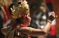 Bali Combi